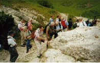Dorset Geologists' Association Group