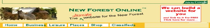 New Forest OnLine